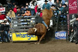 Chris Shivers attempts to ride Berger's Little Yellow Jacket for $1,000,000 at the Colorado Springs World Arena Built Ford Tough Series PBR.