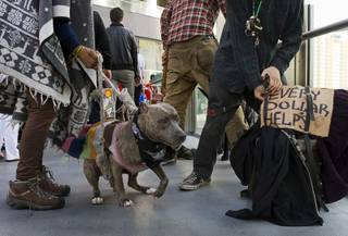 A panhandler, right, packs up to leave after soliciting money with a dog on a pedestrian overpass near Planet Hollywood Friday, Dec. 30, 2011. A proposed county ordinance would ban the use of dogs and other animals by people soliciting money on the Strip.