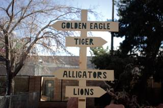 A sign points to various exhibits at the Southern Nevada Zoological-Botanical Park in Las Vegas.