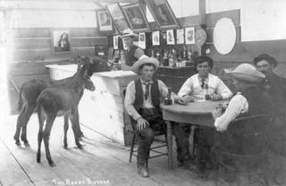 The bartender and patrons of this early Las Vegas saloon appear unconcerned with the two burros at the bar in this 1905 photo titled