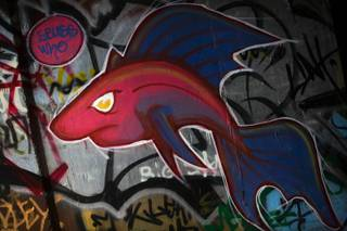 Graffiti artworks line the walls of storm drains under The Strip in Las Vegas.
