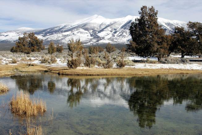 Snowmelt from Wheeler Peak has sustained generations of Northern Nevada cattle ranchers. The creation of Great Basin National Park in 1986 protected grazing rights and farming claims on the water to grow lush alfalfa crops.