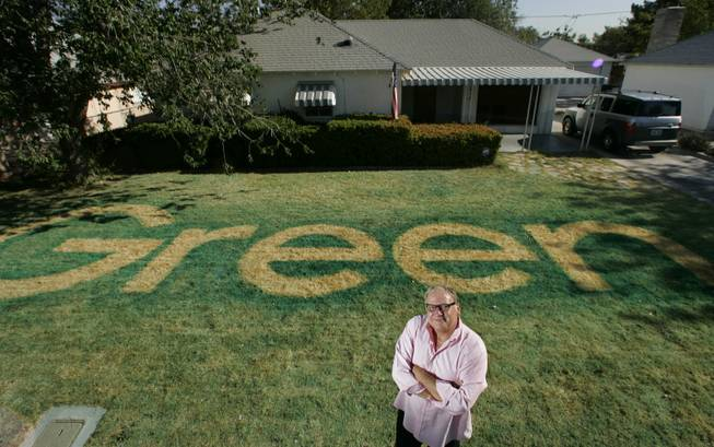 Kill your lawn  Artist gives old adage a water-conscious-in
