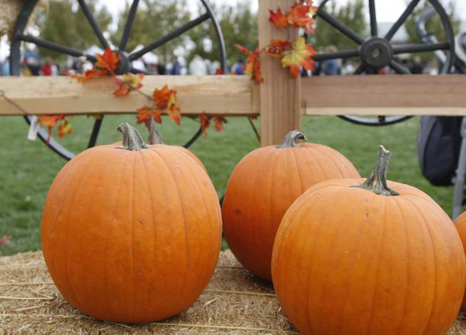 More than 3,000 Summerlin residents attended the second annual Summerlin Pumpkin Festival to welcome the fall season.