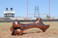 """Sir Herkimer's Bone"" currently resides at Las Vegas High School.  The winner of the Las Vegas vs. Rancho game gets to keep the infamous Herk's Bone."