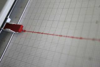 Seismograph activity is seen on the Richter scale at the Lily Fong Geosciences building at UNLV. A 3.0 magnitude earthquake shook an area north of Las Vegas on Friday.