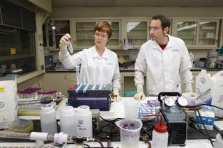 Julie Gostic and her husband Rich, radiochemistry graduate students, demonstrate how they dissolve and separate radioactive material in the