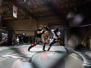 Forrest Griffin works out at Xtreme Couture Gym in Las Vegas on Tuesday.  Griffin will face Anderson Silva at UFC 101 on August 8.