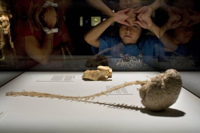 "Zachary Laffitte, 9, gazes into the central nervous system, a full spinal cord and brain column in at ""Bodies: The Exhibition"" on Thursday, Aug. 20, 2009, at the Luxor in Las Vegas."