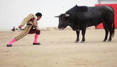 In bloodless bullfighting, does banishing the slaughter kill off the drama?