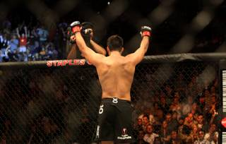 Lyoto Machida celebrates Saturday night after the main event of UFC 104 at Staples Center in Los Angeles. Machida won a controversial unanimous decision for the UFC light heavyweight title.