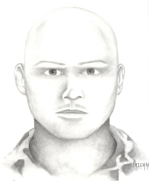 Suspect in attempted abduction case.