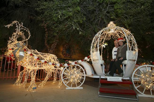 Gary and Mona Garberg pose for a photograph in a reindeer-drawn carriage Saturday night in the Magical Forest at Opportunity Village.