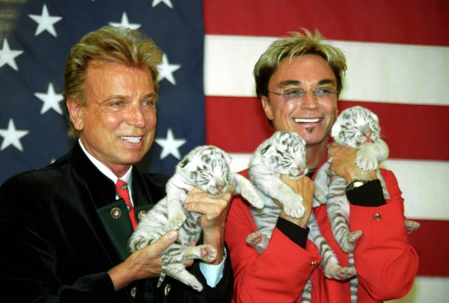 Siegfried & Roy, with holding cubs and sporting smiles.