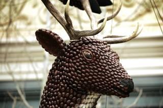 Reindeer made from pecans decorate the Bellagio Conservatory in Las Vegas Friday, Dec. 11, 2009.