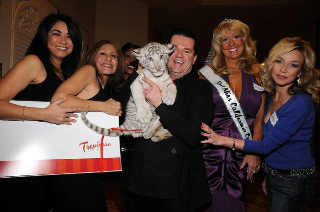 Dirk Arthur and his 2-month-old white tiger cub Saber are flanked by ladies at the Cougar Convention in the Tropicana on Jan. 22, 2010.