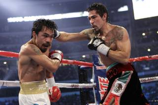 Antonio Margarito, right, throws a punch at Manny Pacquiao during their WBC title fight at Dallas Cowboys Stadium in Arlington, Texas on November 13, 2010.