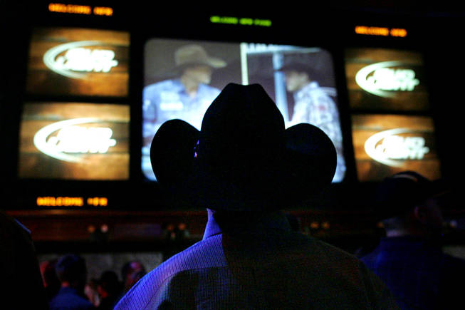 A re-broadcast of the evening's rodeo is shown during an after party at the Mirage sports book following the first go round of the National Finals Rodeo Thursday, December 2, 2010.