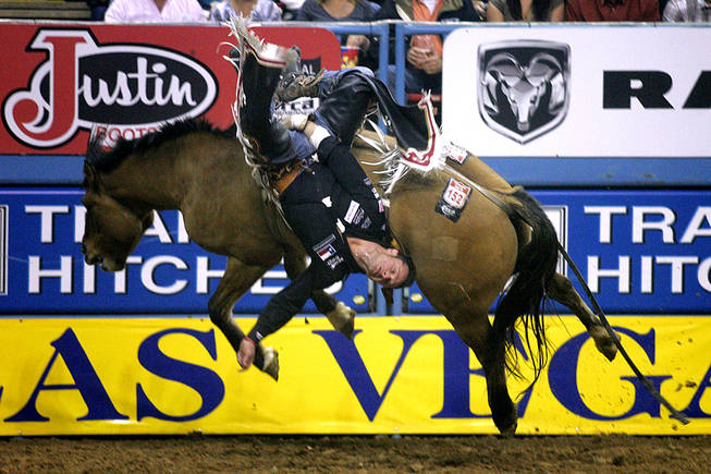 Bareback rider Clint Cannon hangs on to Joy Ride during the last night of the National Finals Rodeo on Saturday, Dec. 11, 2010, at the Thomas & Mack Center.