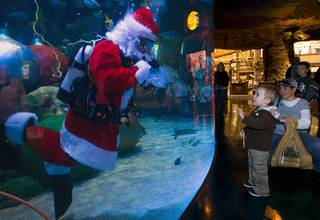 Bryson Drescher, 3, and his mother Jenny Drescher of Laughlin visit with an underwater Santa Claus swimming in a 117,000-gallon aquarium at the Silverton hotel-casino Sunday, December 19, 2010. Santa was equipped with a microphone so that he could communicate with the children.