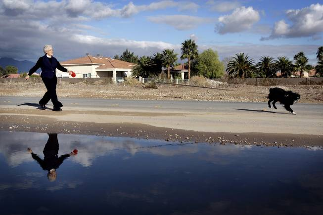 Reverend Mary Bredlau walks her dog Schatze near her home in North Las Vegas December 23, 2010.