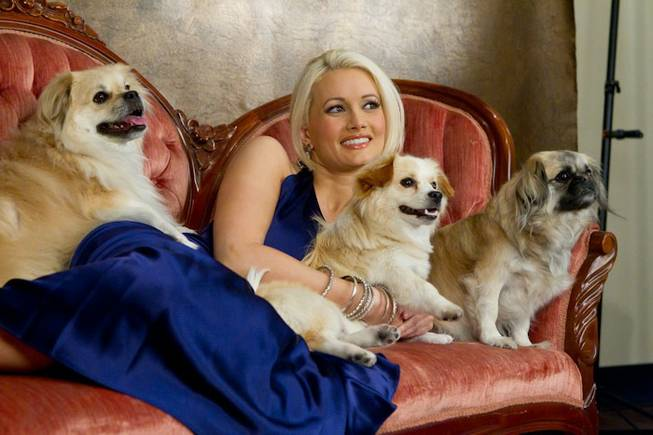 Holly Madison and her dogs Napoleon, Josephine and Louis at Pet'ographique Photography Boutique during a photo shoot for the cover of <em>The Vegas Dog</em> in Henderson on May 16, 2011.