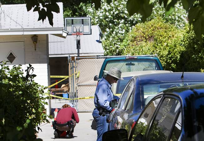 Metro crime scene analysts document evidence after a Metro Police officer shot a pit bull at a home near Shetland Road near Charleston Boulevard Saturday, June 25, 2011. The officer was looking for a subject with an outstanding warrant when the dog broke through a fence, police said.
