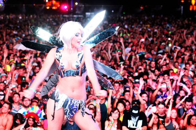 Electric Daisy Carnival Night 1