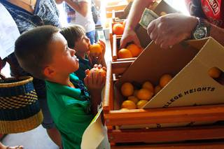 Ashton Bonds, left, and Noah Stratton pick up some oranges at the Fremont East Entertainment District (FEED) Farmers' Market Thursday, July 14, 2011.