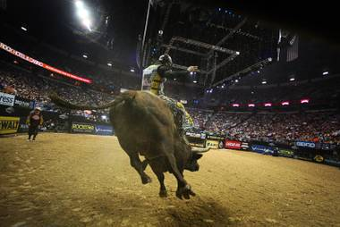 Bull rider Mike Lee leaves the chute during the Professional Bull Riders World Finals at the Thomas and Mack Center Sunday, Oct. 30, 2011.