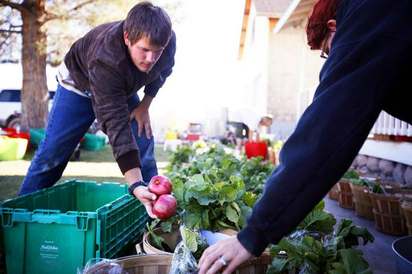 Farm-to-table Event Turns Sour When Health Inspector