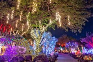 Ethel M's 18th Annual Holiday Cactus Lighting on Nov. 15, 2011, in Henderson.