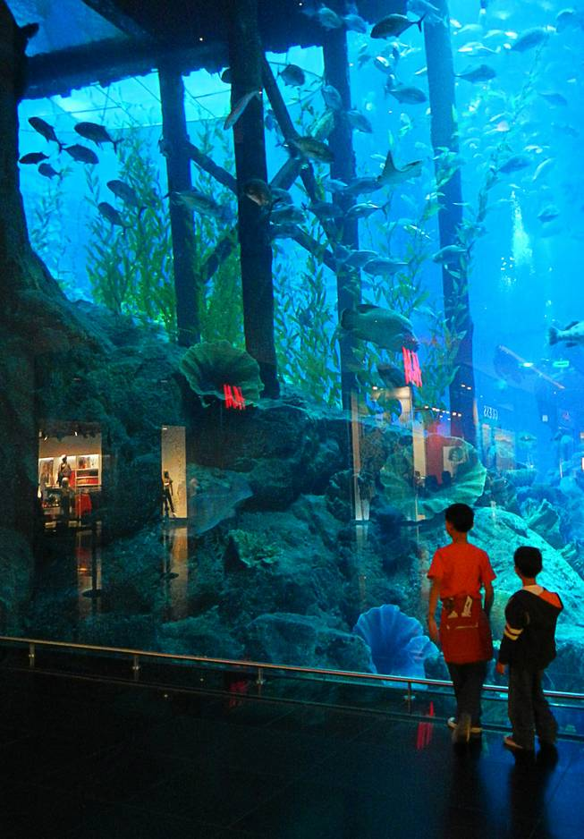 In Dubai, United Arab Emirates, two children stop to marvel at the aquarium in the Dubai Mall. December  2011.