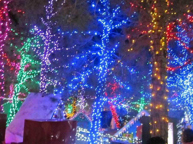 Opportunity Village's Magical Forest on Dec. 19, 2011.