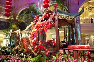 The Bellagio Conservatory decorates it's gardens with a very special Chinese New Year theme, Monday Jan. 9, 2012.
