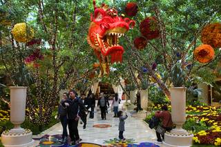 Chinese New Year decorations are displayed Wynn Las Vegas Sunday, Jan. 22, 2012.  The first day of the Chinese New Year, the Year of the Dragon, begins at midnight on January 23, 2012.
