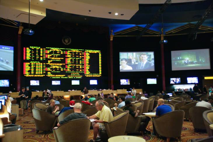 A view of the Caesars Palace sports book, March 13, 2012.