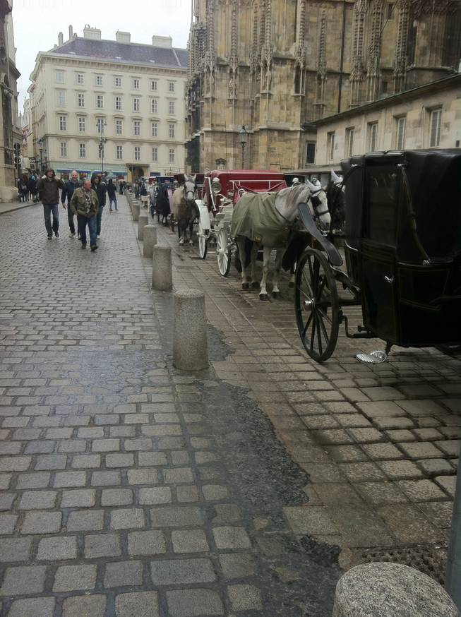 Carriages lined up along the streets in Stephensplatz in Vienna.
