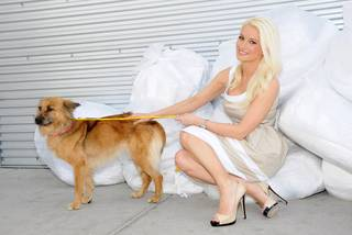 Holly Madison at the Animal Foundation's 9th Annual Best in Show at Orleans Arena on Sunday, April 22, 2012.