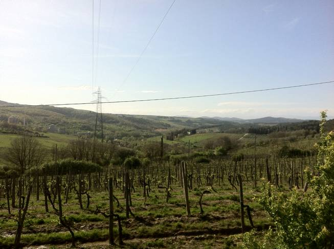 A view of the Tuscan countryside, which seems to go on forever, but of course does not.