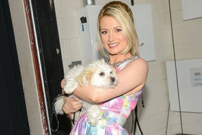 "Holly Madison at 2013 ""Best in Show"" at The Orleans Arena on Sunday, April 28, 2013."