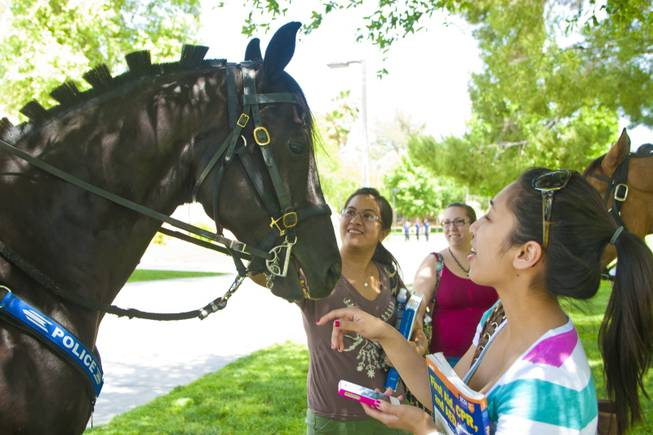 "UNLV police horse Rebel, pictured doing outreach on campus last year, was retired to a local ranch and his equine partner Pride sent to work with an Arizona police department after the university's mounted unit suspended operations due to a ""staffing issue"" earlier this fall."