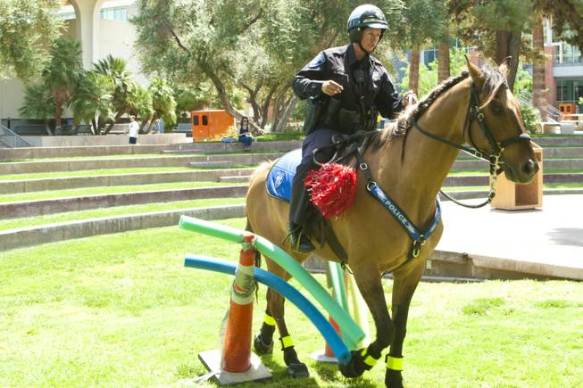 Officer Stephani Preston of the UNLV Mounted Police gives a demonstration on the maneuverability of her horse Pride on campus Tuesday, May 1, 2012.