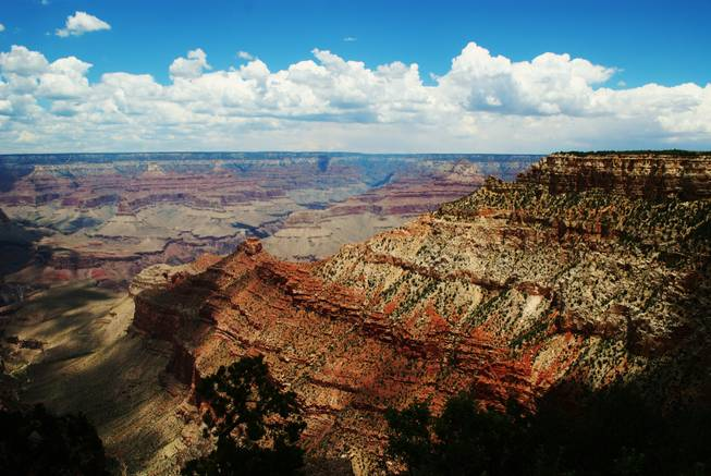 A view from the Grand Canyon's south rim.