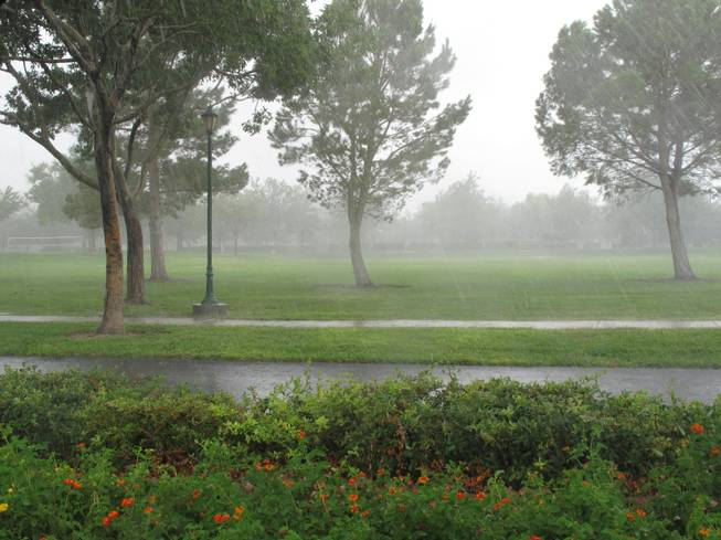 Heavy rain fell over Discovery Park in Henderson on Friday afternoon, Aug. 31, 2012