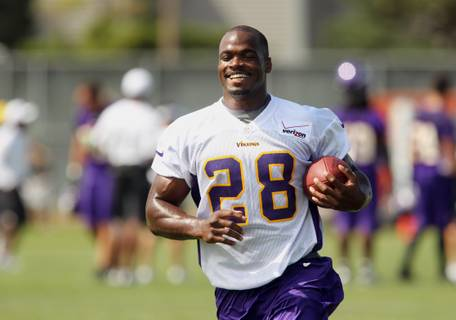 2012 Minnesota Vikings