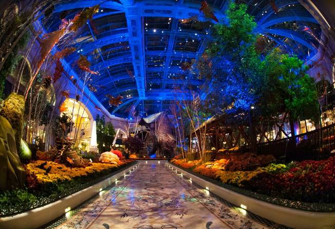 The Bellagio Conservatory and Botanical Gardens' Fall 2012 display photographed ...