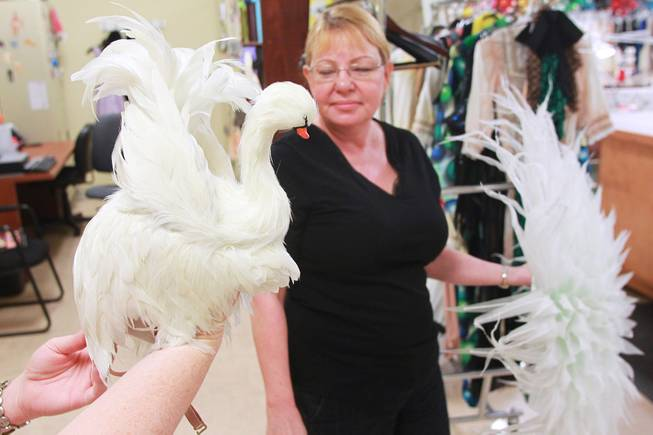 "Aimee Johnson holds a swan-shaped head piece backstage as the Cirque du Soleil show ""Zarkana"" moves in to its new residence at Aria Thursday, Oct. 4, 2012."