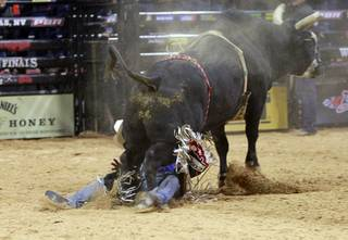 Renato Nunes of Brazil escapes serious injury after being thrown from a bull during the Built Ford Tough Series Professional Bull Riders (PBR) World Finals at the Thomas & Mack Center Sunday, Oct. 28, 2012.