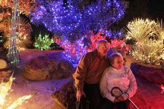 Wayne and Nancy Cook of North Las Vegas pose for a photo during Ethel M Chocolates 19th Annual Holiday Cactus Lighting in Henderson on Tuesday, November 13, 2012.